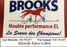Brooks moulée performance