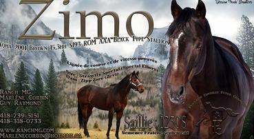 Ranch MG - Zimo